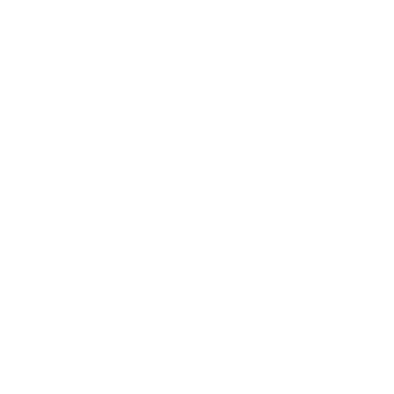 The Experience Firm